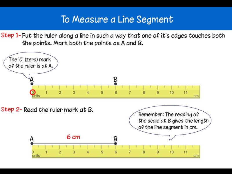 Geometry for Class 5 | Geometry Basics